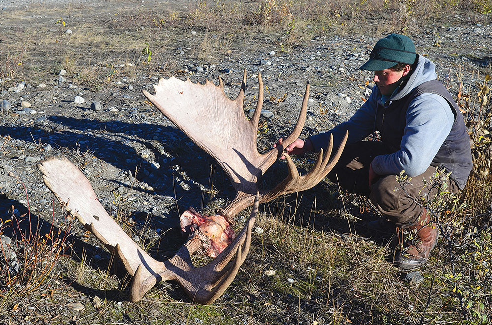Guide Colton Hodson with a moose rack that measures approximately 65 inches across – comfortably better than the 50-inch legal minimum.