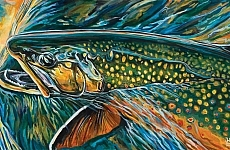 High Lakes Brook Trout, by Josh Udesen
