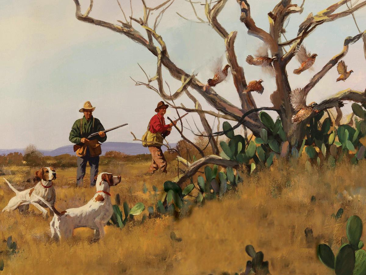 A Texas Quail Story