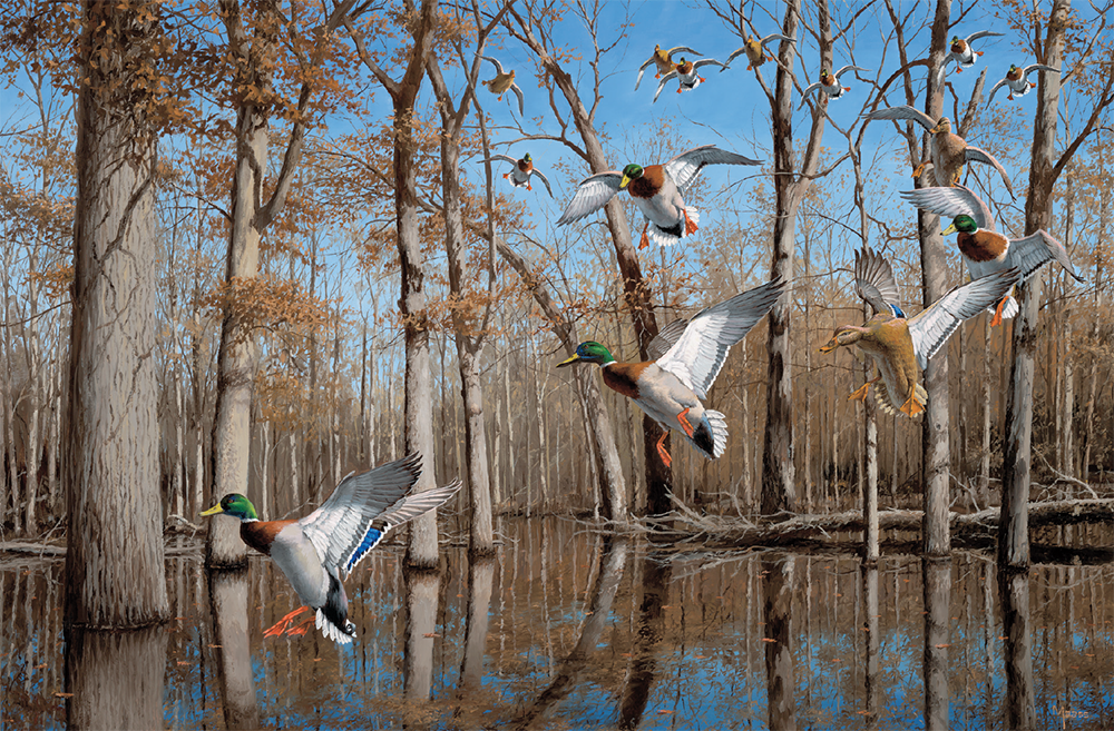 Heart of the Timber—Mallards painting