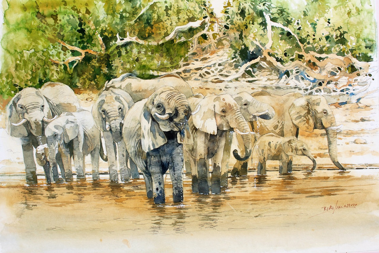 Bodo Meier, the Artist Who Takes Artists to Africa