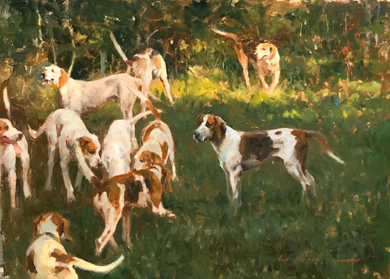Hounds in the Shade